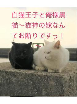 白猫王子と俺様黒猫~猫神の嫁なんてお断りですっ!~