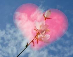 そして、恋の種が花開く。