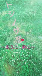 トシノサ恋 ~永久に…君に~