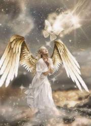 嘘つき社長と天使の恋物語