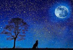 満月に誓うーー欲しがりなオオカミ