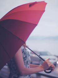 晴れた日に降る雨のように